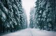 Підготуйте ваш автомобіль Hyundai до зими за вигідною сервісної програмою