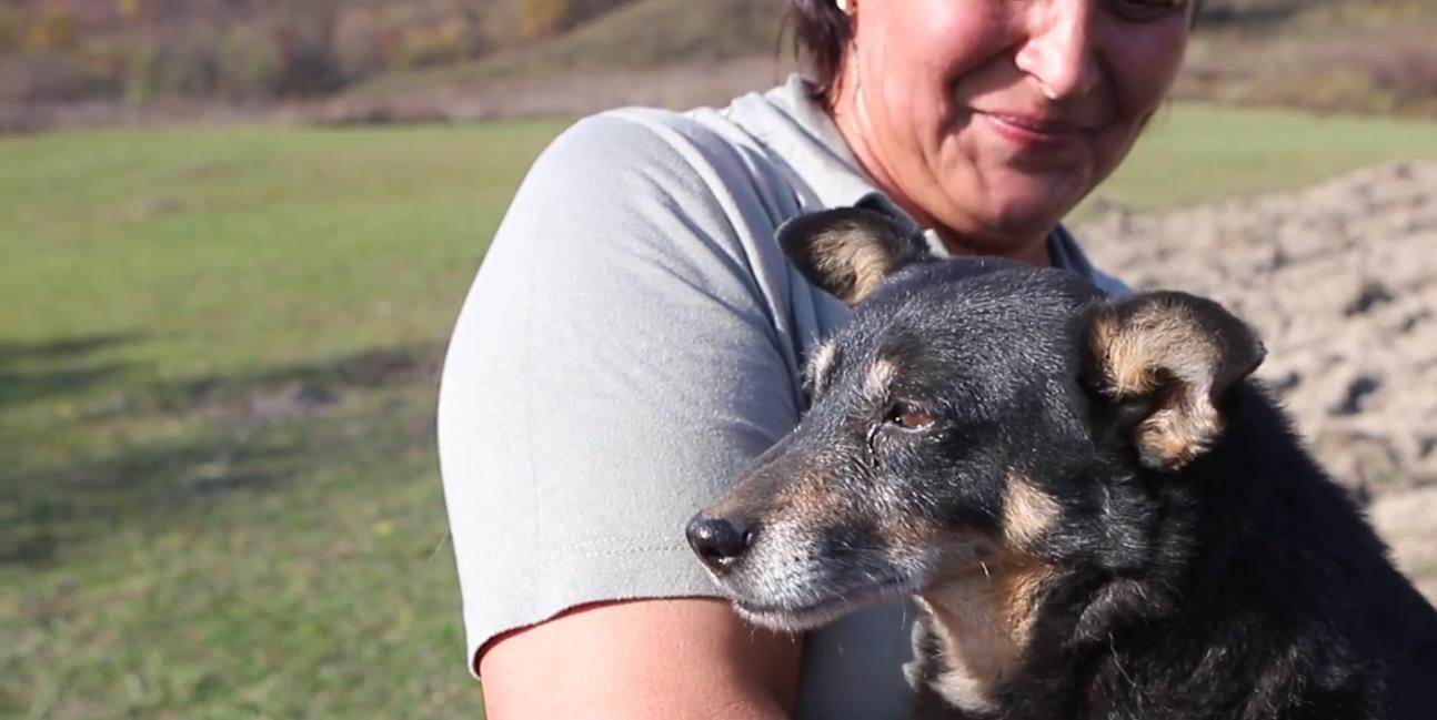 На Закарпатті собака врятував життя хазяїну