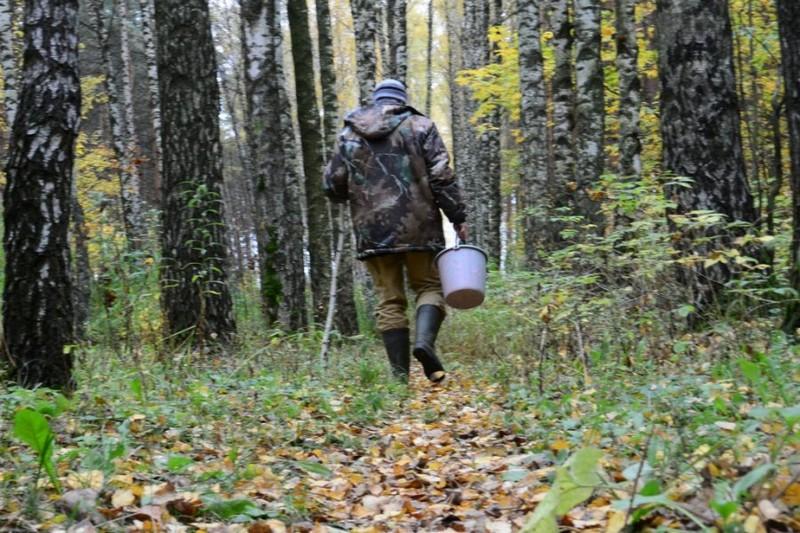 Чоловік пішов по гриби і заблукав