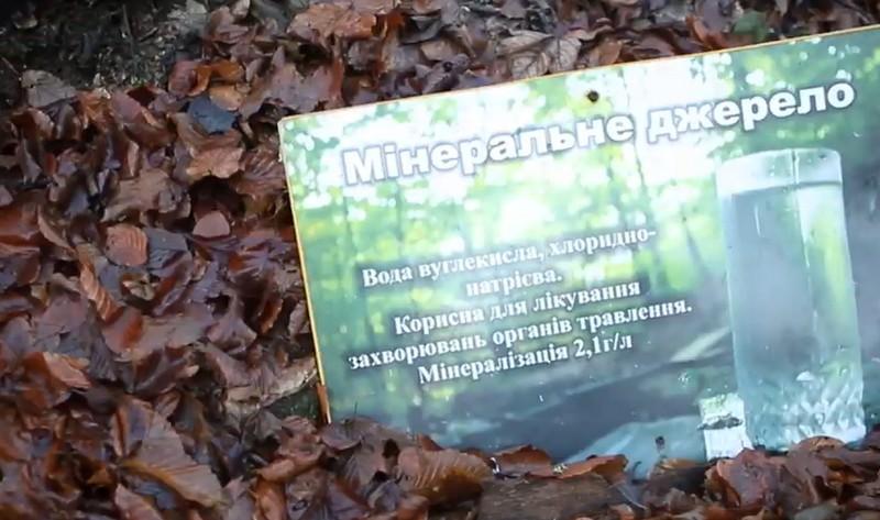 У закарпатському селі хочуть відродити закинуті мінеральні джерела