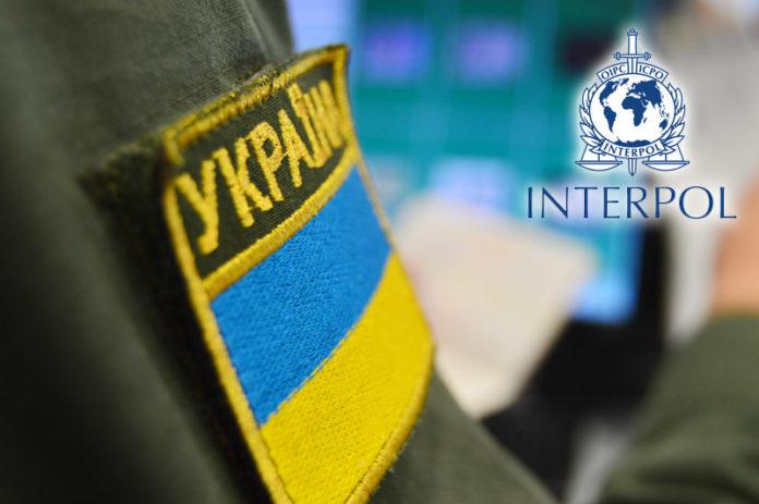 Викрадений «Volkswagen» затримали прикордонники  в Ужгороді