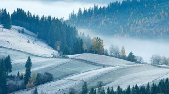 Погода у неділю: тепло, туман, місцями ожеледиця