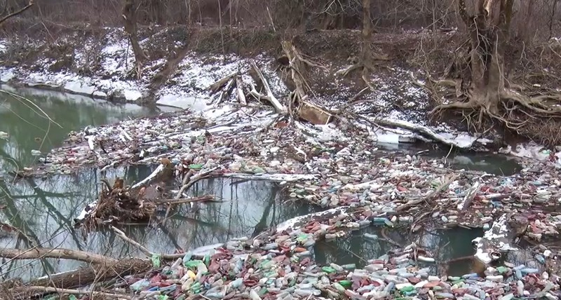 Річка Боржава потерпає від сміття: шокуюче відео