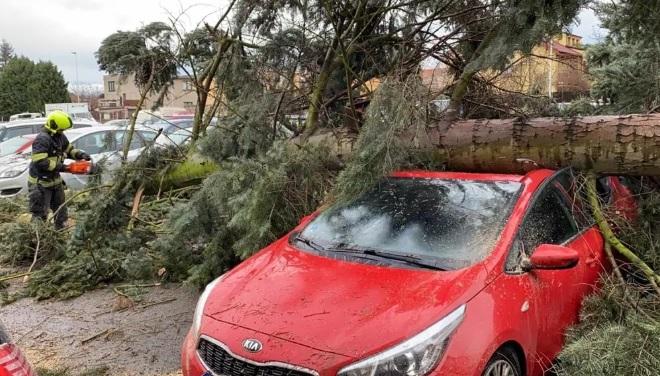Повалені дерева та розтрощені машини: Чехію накрила потужна негода, – ЗМІ