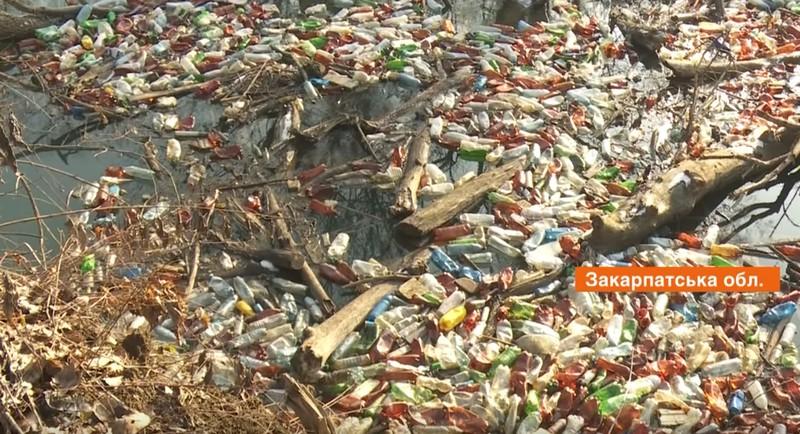 Пластик, меблі і туші тварин: річка Боржава на межі екологічної катастрофи