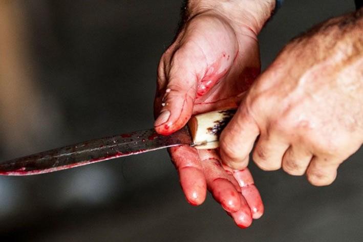 Жорстоке вбивство у Мукачеві: чоловіка засудили до 9 років позбавлення волі