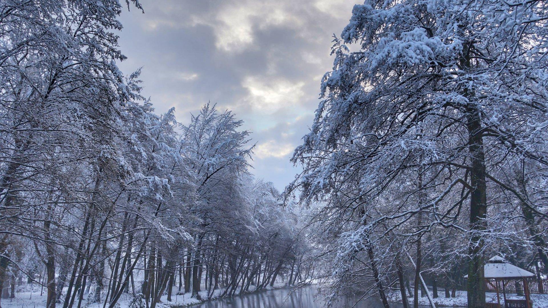 Без опадів, вночі та вранці місцями туман: якою буде погода на вихідних