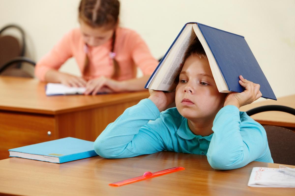 Навчання у школах може бути продовжене, – нардеп