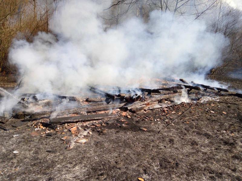Закарпатці безжально палять траву та чагарники: вогонь перекинувся на будинки