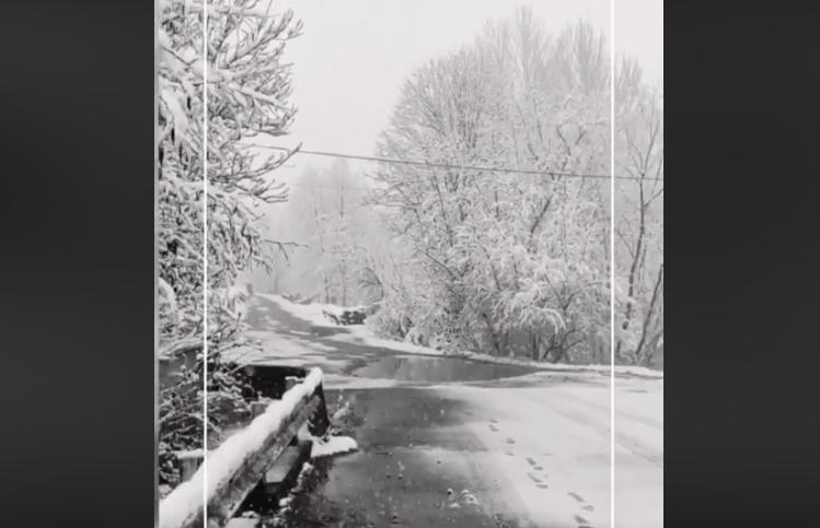Зима посеред квітня: як на Закарпатті засніжило