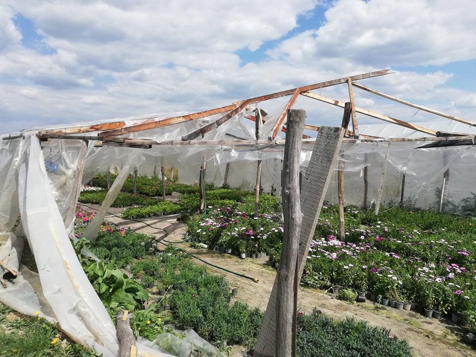 Закарпатські фермери рахують збитки після буревію