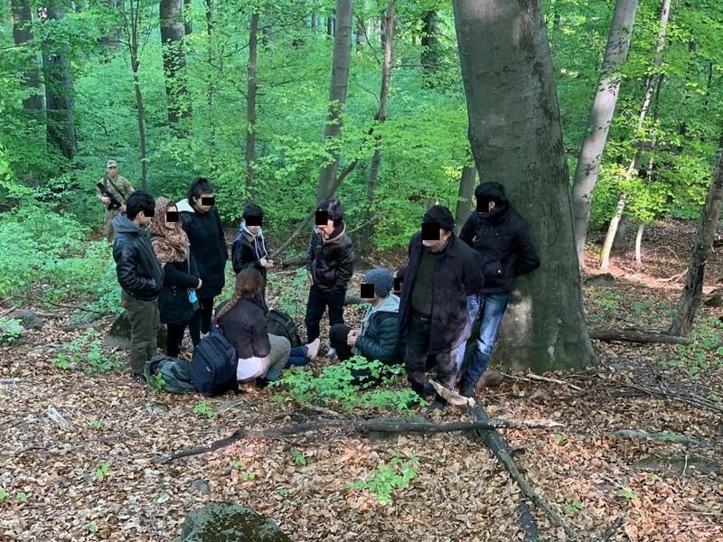 Група нелегалів намагалась потрапити до сусідньої Словаччини