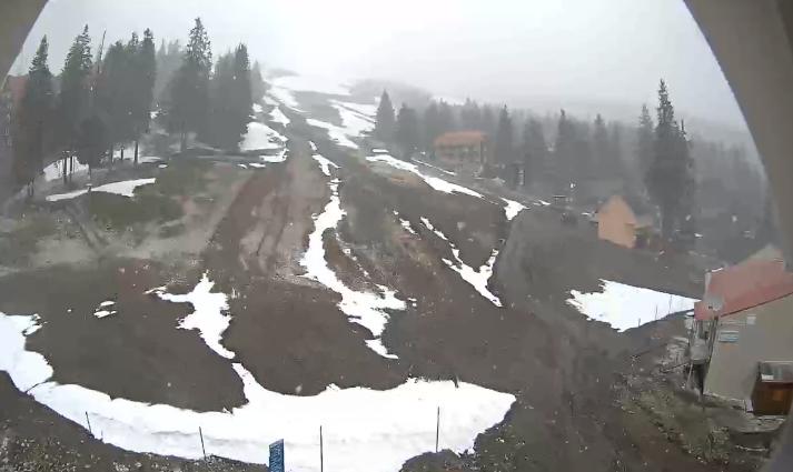 У Карпати повернулася зима: високогір'я засипає снігом