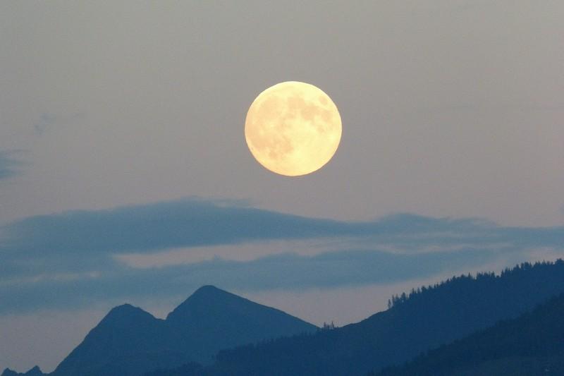 Квітковий місяць: що сьогодні треба зробити і як загадати бажання