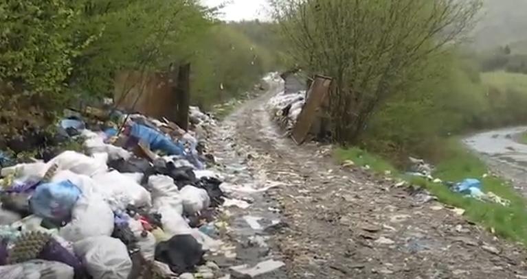 На Міжгірщині гори потопають у смітті