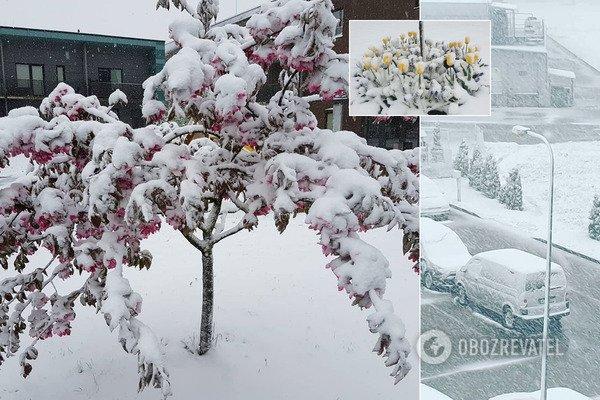 Європу засипало снігом: циклон рухається до України