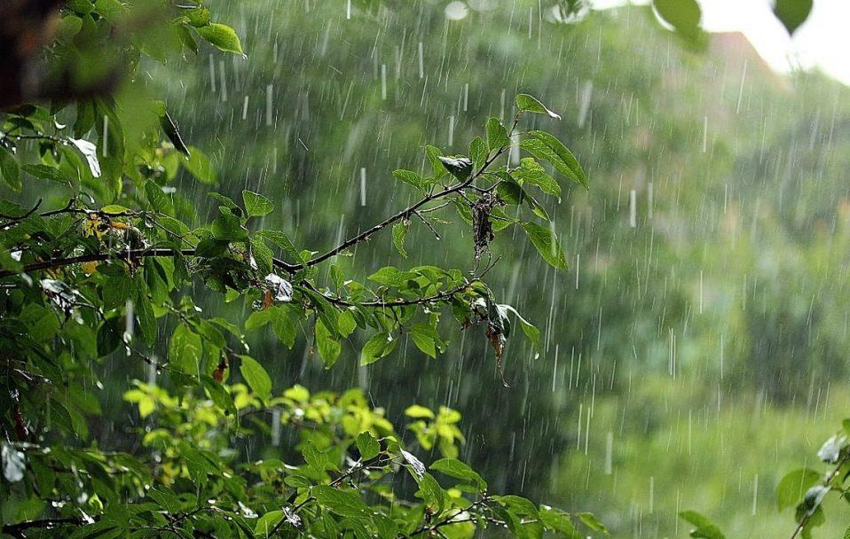 Синоптики оголосили на Закарпатті штормове попередження