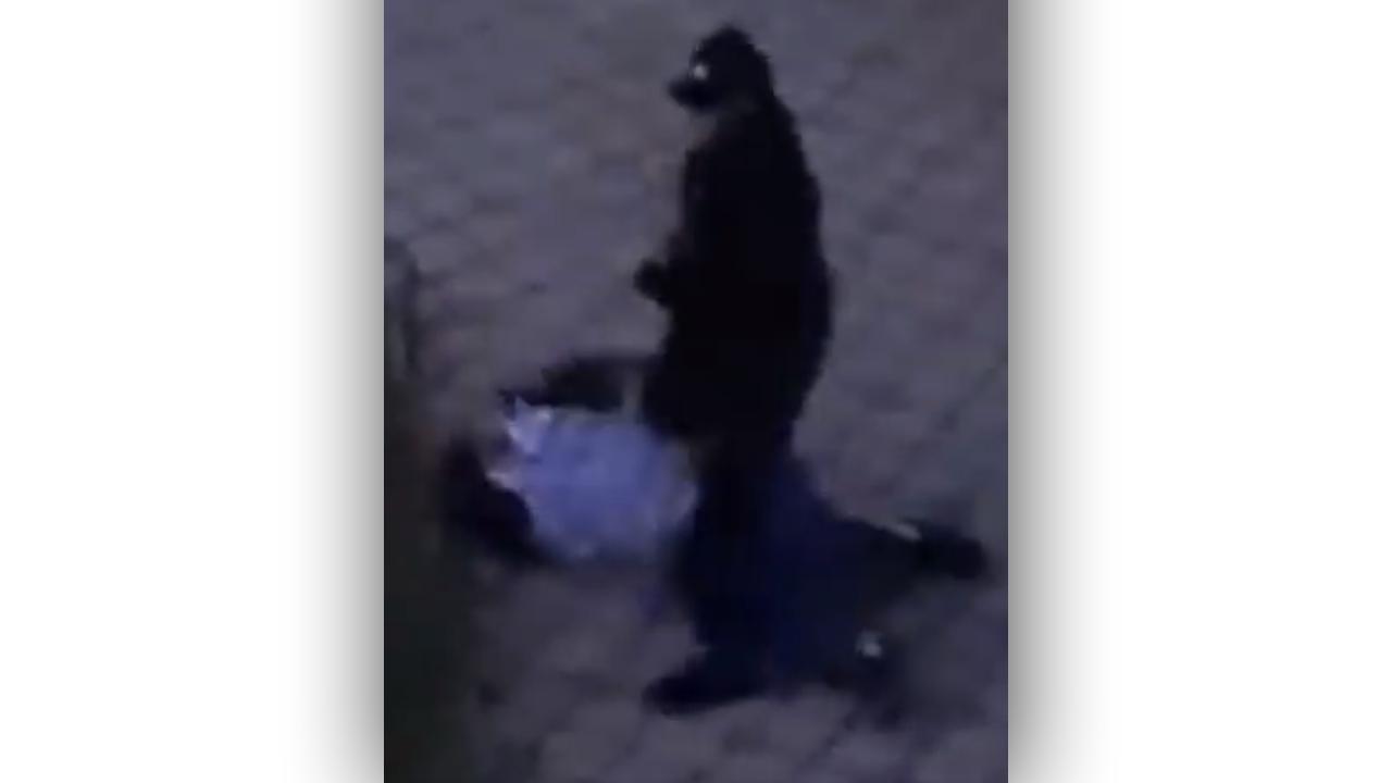 22-річний юнак жорстоко побив 64-річного чоловіка: очевидці зняли це на відео