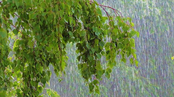 В області прогнозують сильні зливи та підвищення води у річках
