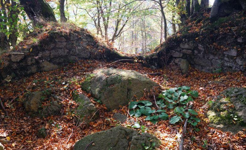 Активісти очистили стежку до маловідомого замку в Закарпатті