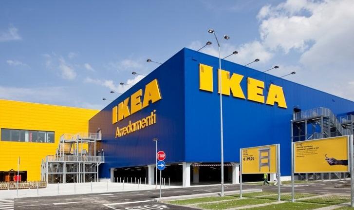 """Стільці для """"IKEA"""" виробляють із незаконно вирубаного закарпатського лісу, – ЗМІ"""