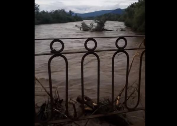 Паводкова хвиля дісталась Хустщини: опубліковано відео