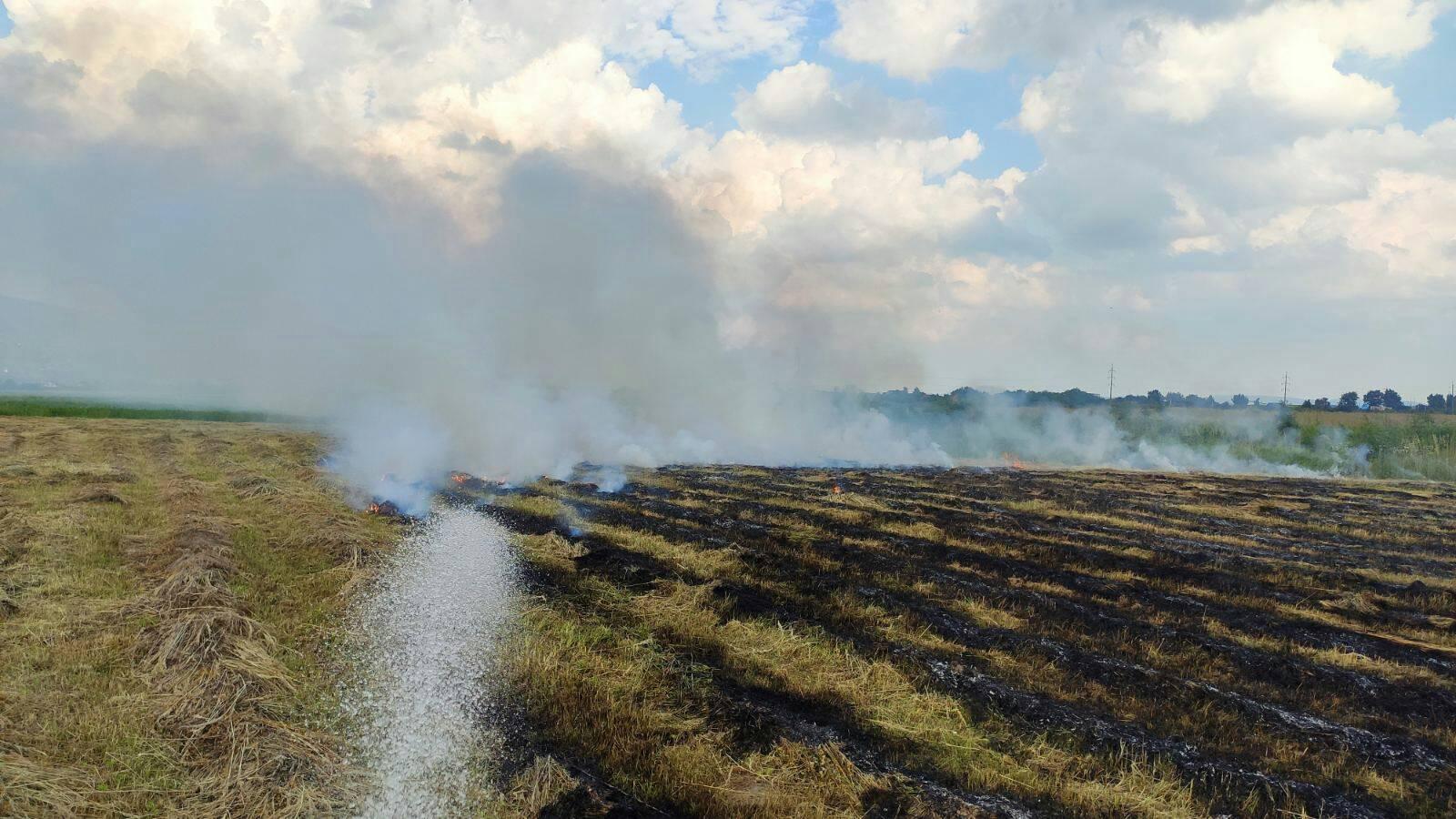 На Виноградівщині загорілось поле із сіном