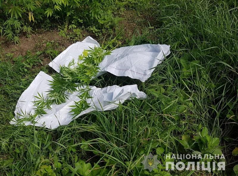 Поліцейські розповіли про те, що виявили у туристичному селі