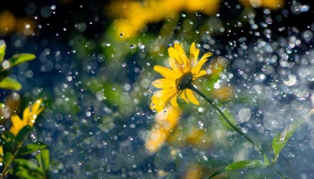 Дощі та грози: синоптики розповіли, якою буде погода наприкінці липня
