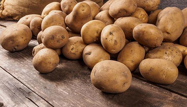 Експерт дав прогноз щодо врожаю картоплі