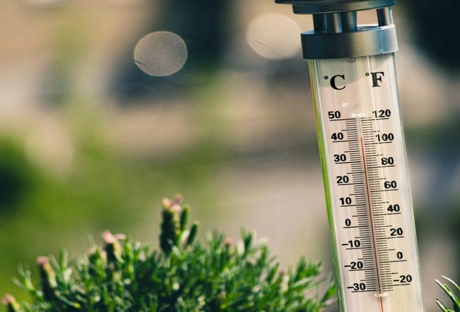 Синоптик Наталія Діденко озвучила прогноз погоди на перший тиждень серпня