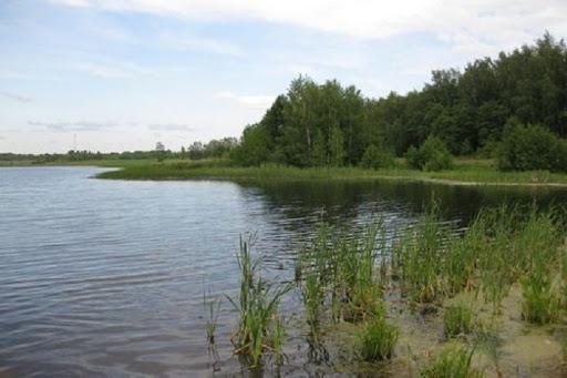 Під час рибалки на озері у селі Горбок загинув чоловік із Мукачева