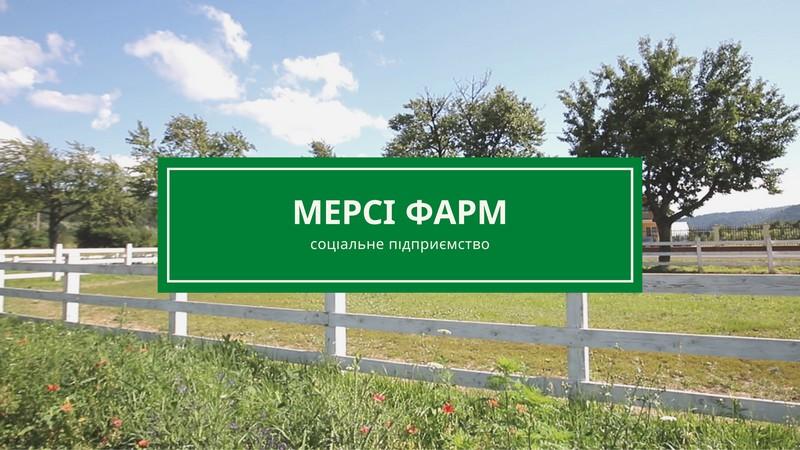 Мерсі Фарм у Невицькому : як працює єдине на Закарпатті соціальне підприємство