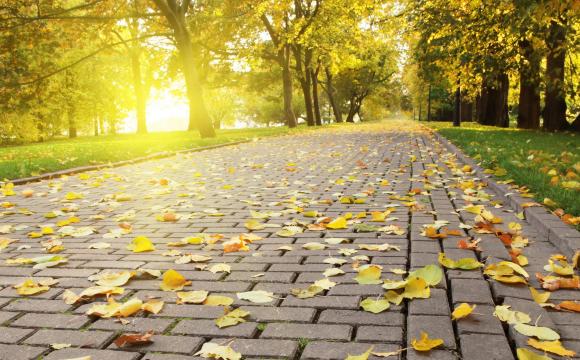 Укргідрометцентр озвучив свій прогноз погоди на вересень