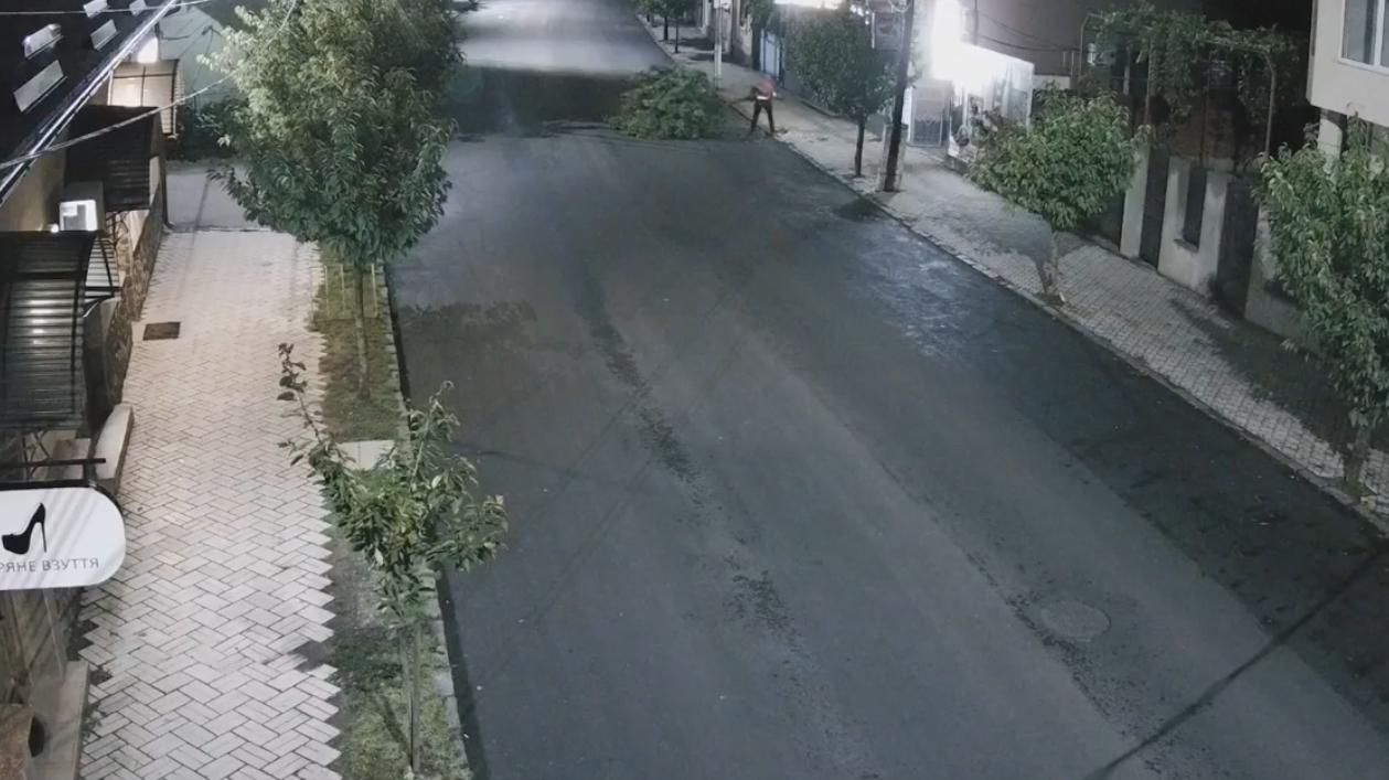 Невідомий вночі зрізав сакуру: весь процес потрапив на камеру відеонагляду