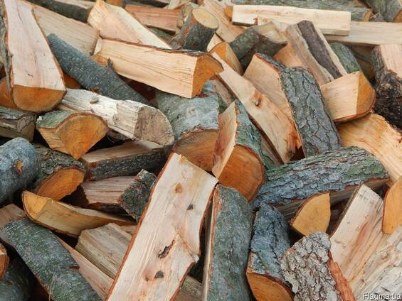 Лісівники Закарпаття озвучили ціни на дрова на прийдешній опалювальний сезон