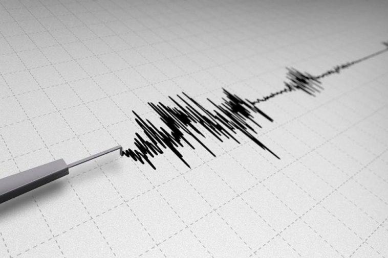 На Закарпатті зафіксували землетрус: відомо, де саме