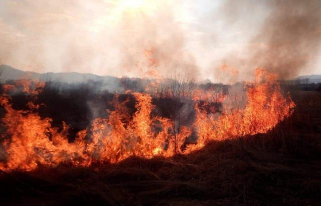 Синоптики оголосили надзвичайну пожежну небезпеку