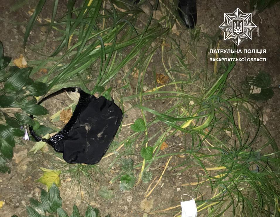 Опівночі в Ужгороді скоєно ганебний злочин: подробиці від поліції