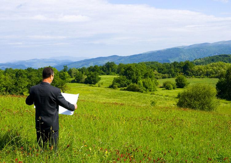 Держслужбовець роздавав державні земельні ділянки за підробленими документами приватним особам
