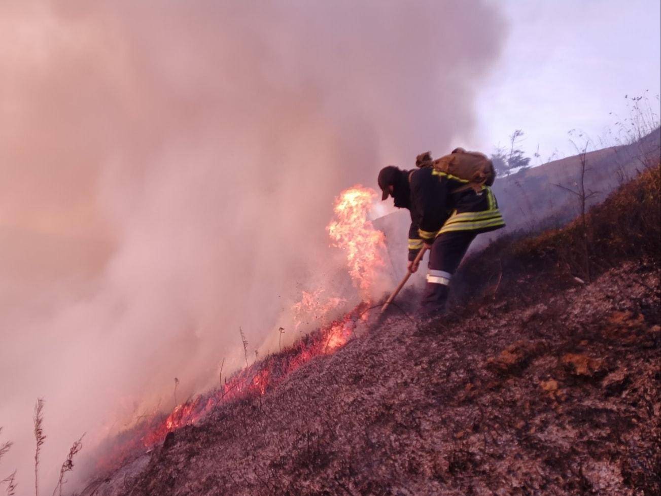 Рятувальники розповіли про велику пожежу на Воловеччині