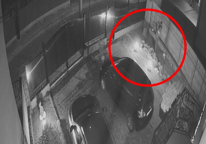Злочин у Мукачеві записала камера спостереження: відео, як злодій перелізав паркан у двір та крав майно