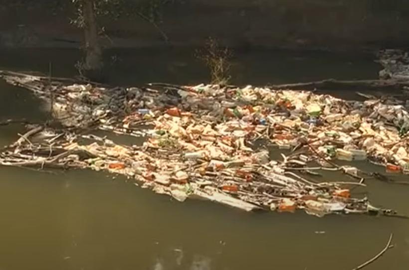 На Закарпатті знайшли рештки людини, коли очищали річку від сміття