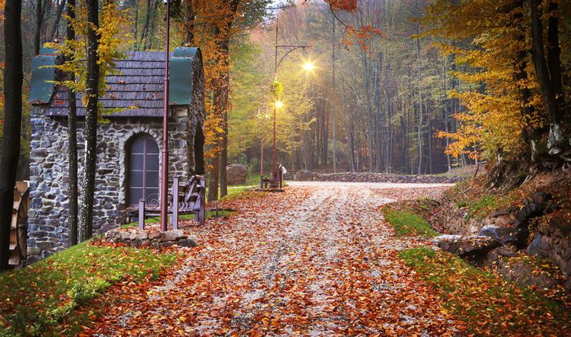 Найкращі парки Закарпаття, які заворожують своєю красою восени