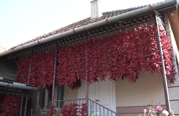 Журналісти розповіли про закарпатське село, в якому виготовляють пряні спеції