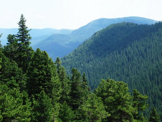 У горах зникли дві жінки. Їх шукають