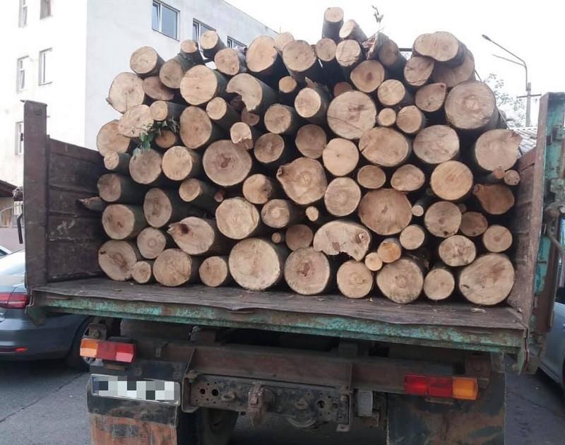 Мукачівець нелегально перевозив ліс