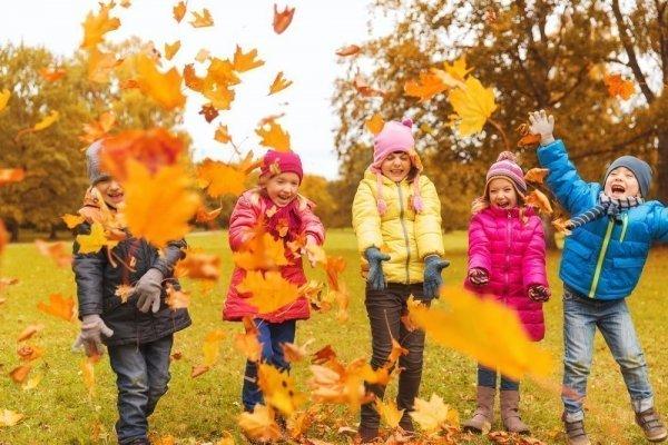 Осінні канікули 2020 у школах можуть розпочатися на 10 днів раніше через місцеві вибори