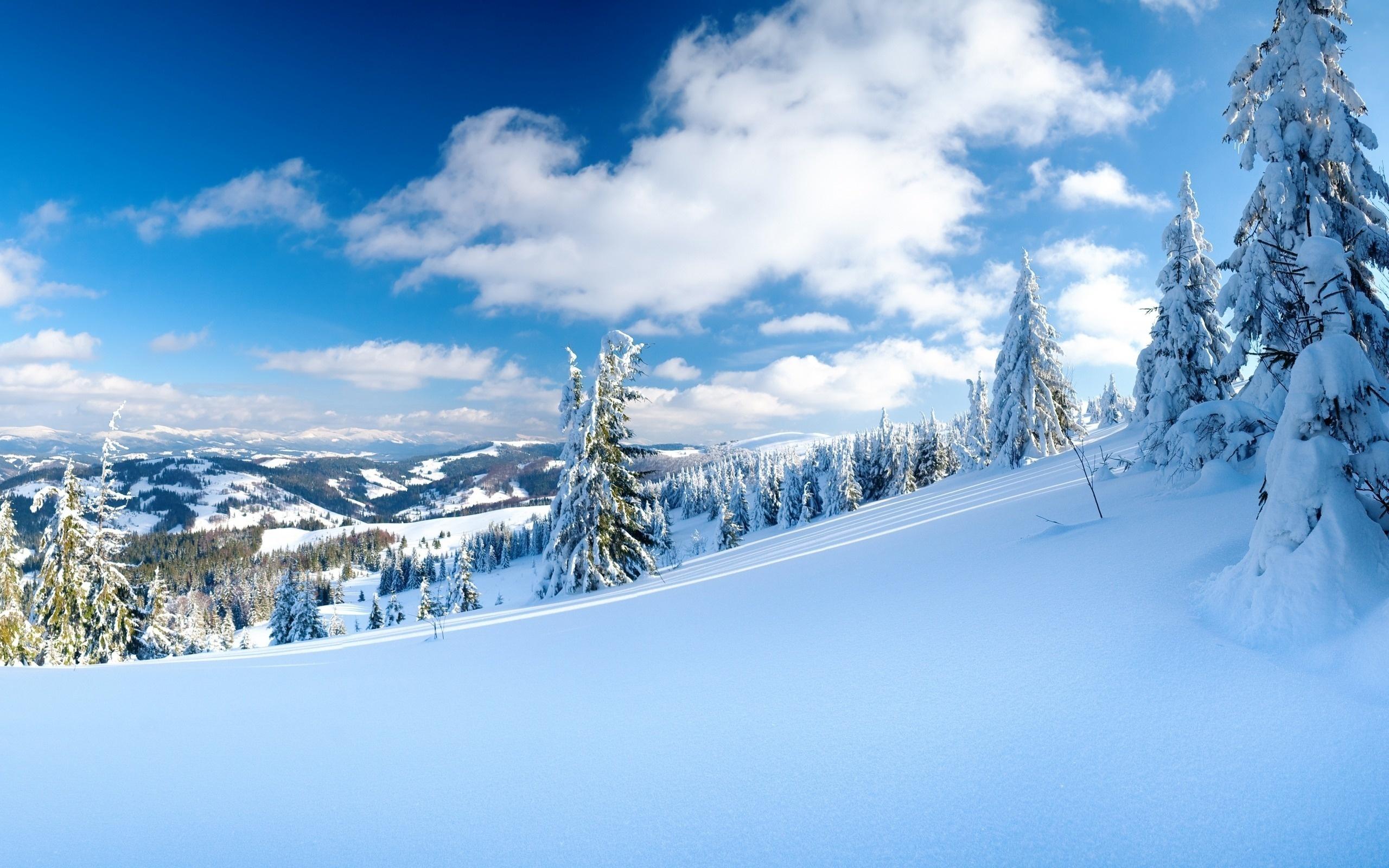 Погода на зиму в Україні 2020-2021