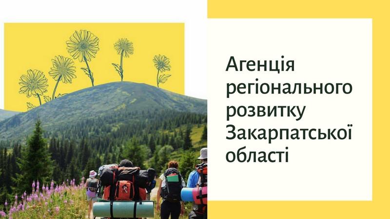 Агенція регіонального розвитку Закарпатської області: чим займається структура